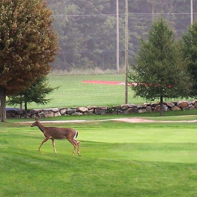 Rabais golf estrie